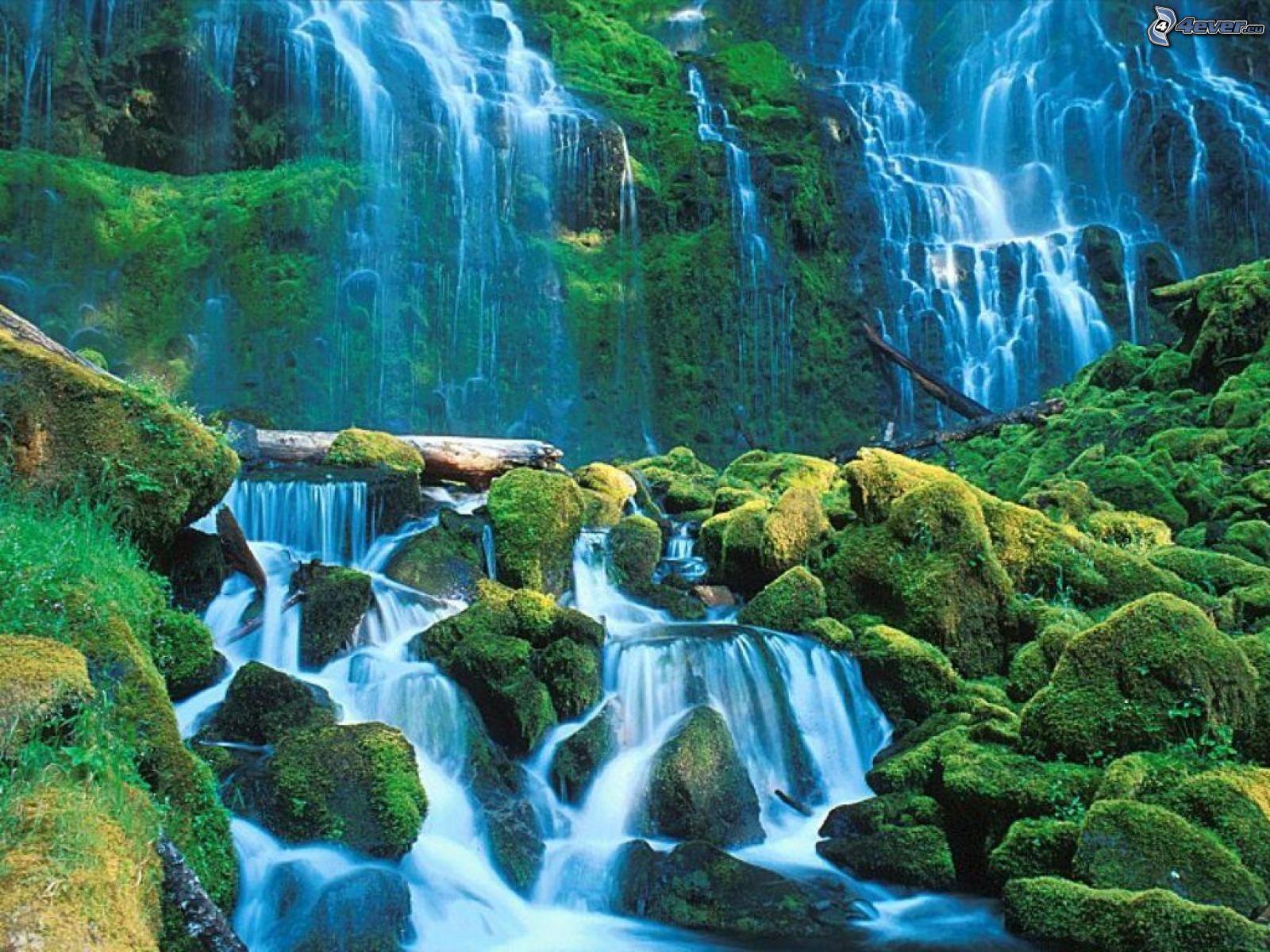Vodopadi - Page 6 Vodopady,-dzungla-126239