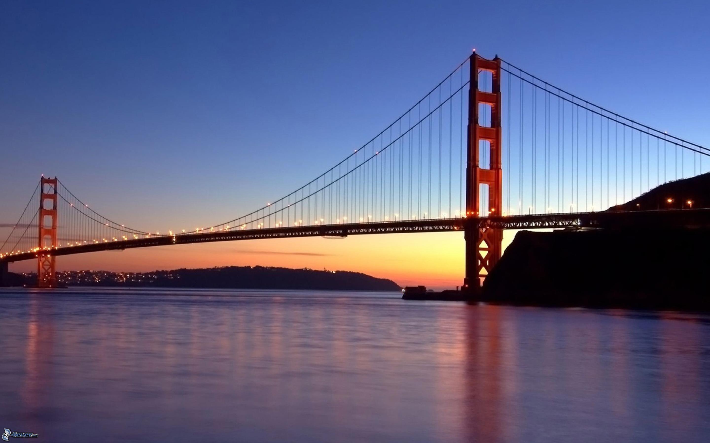 Ссут под мостом 2 фотография